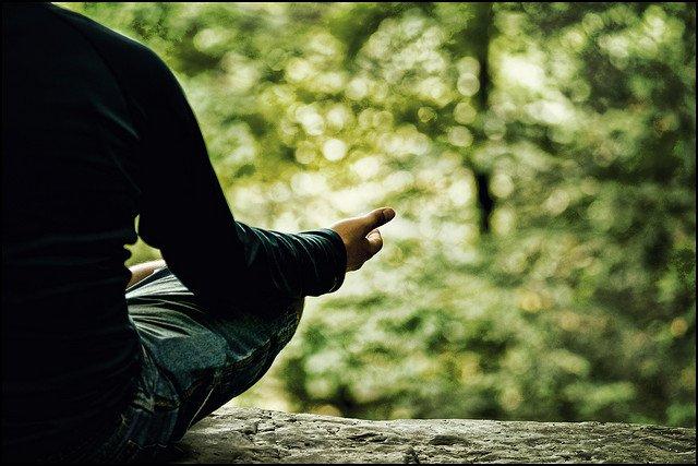 FREE Guided Spring Renewal Meditation