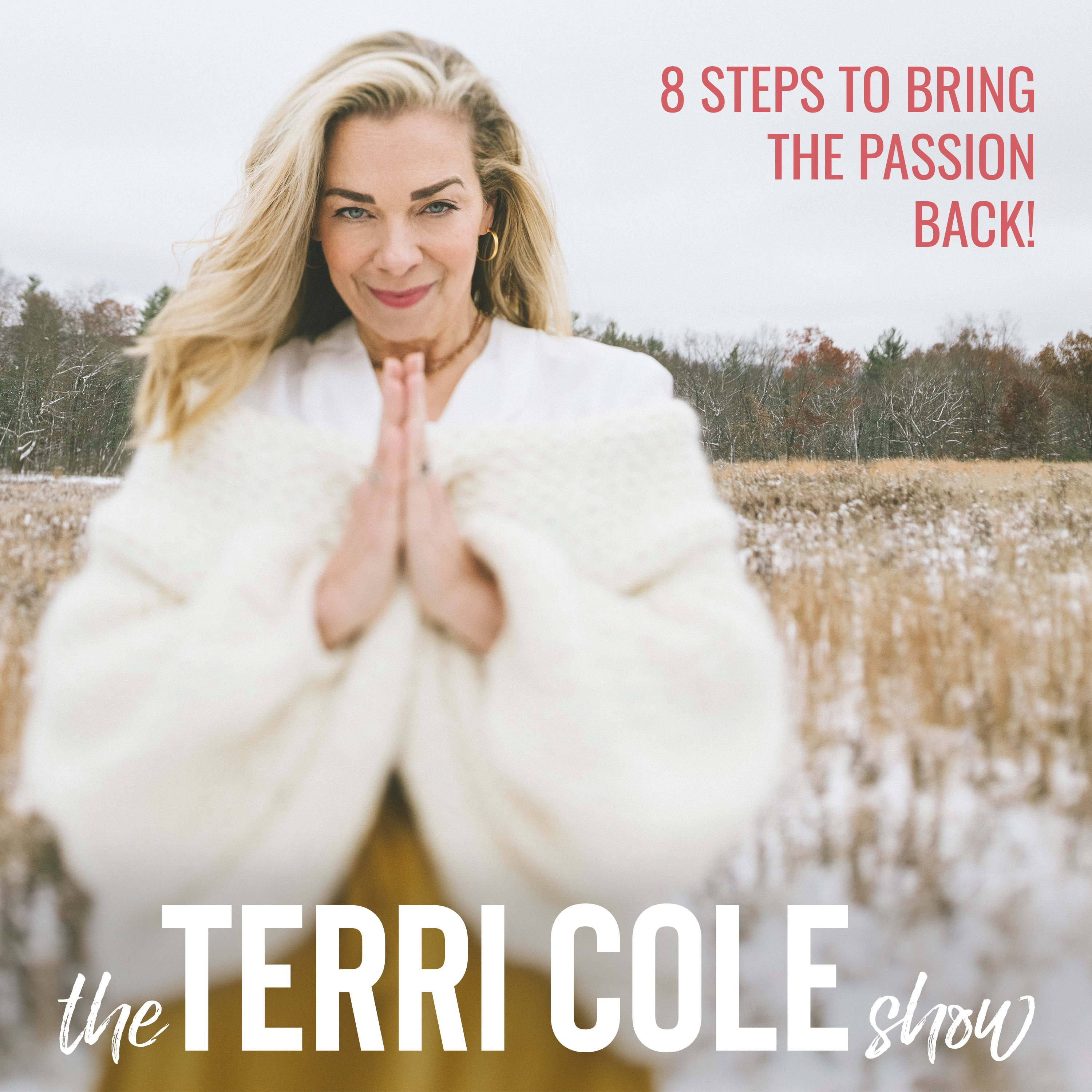 8 Steps to Bring the Passion Back! on The Terri Cole Show