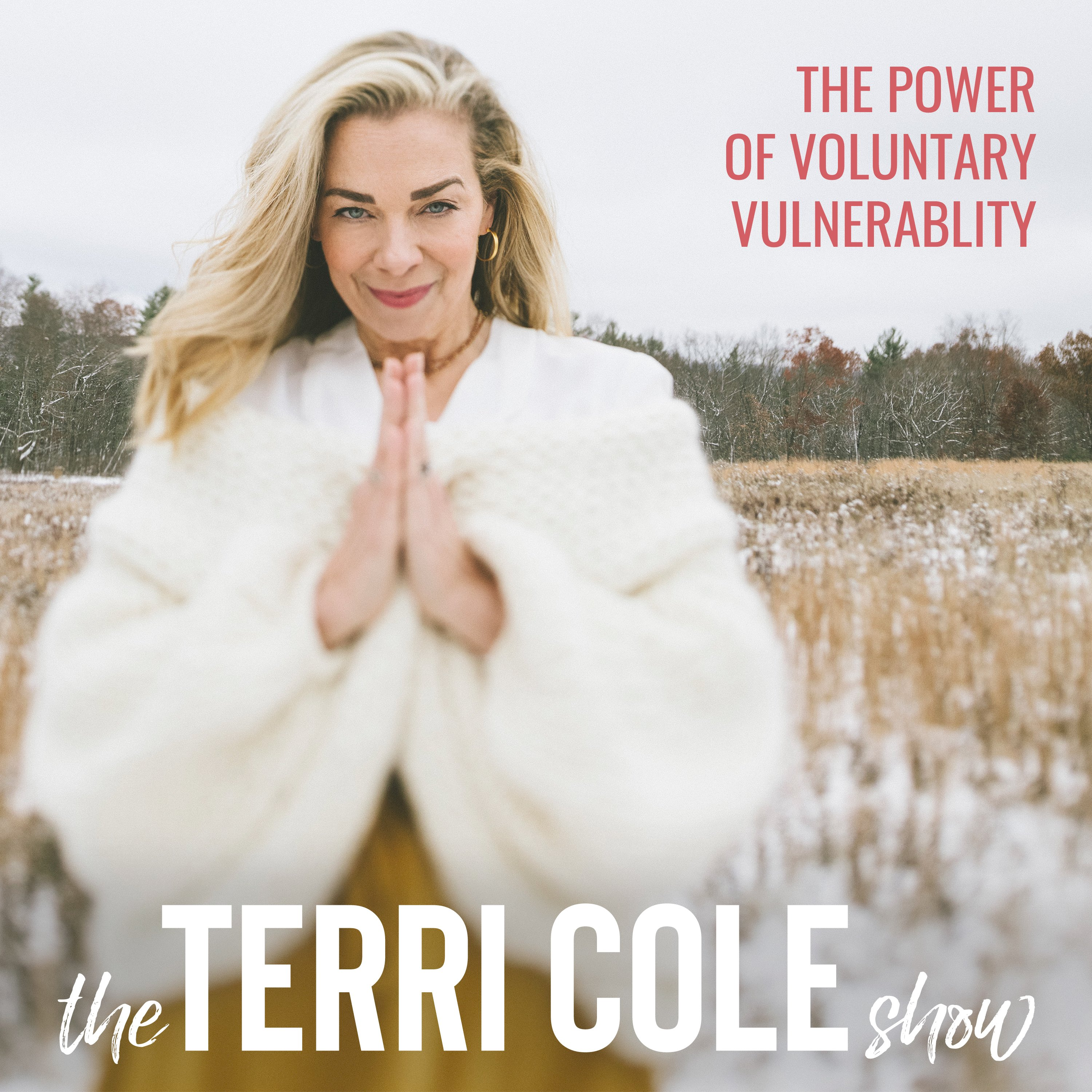 The Power of Voluntary Vulnerability on The Terri Cole Show