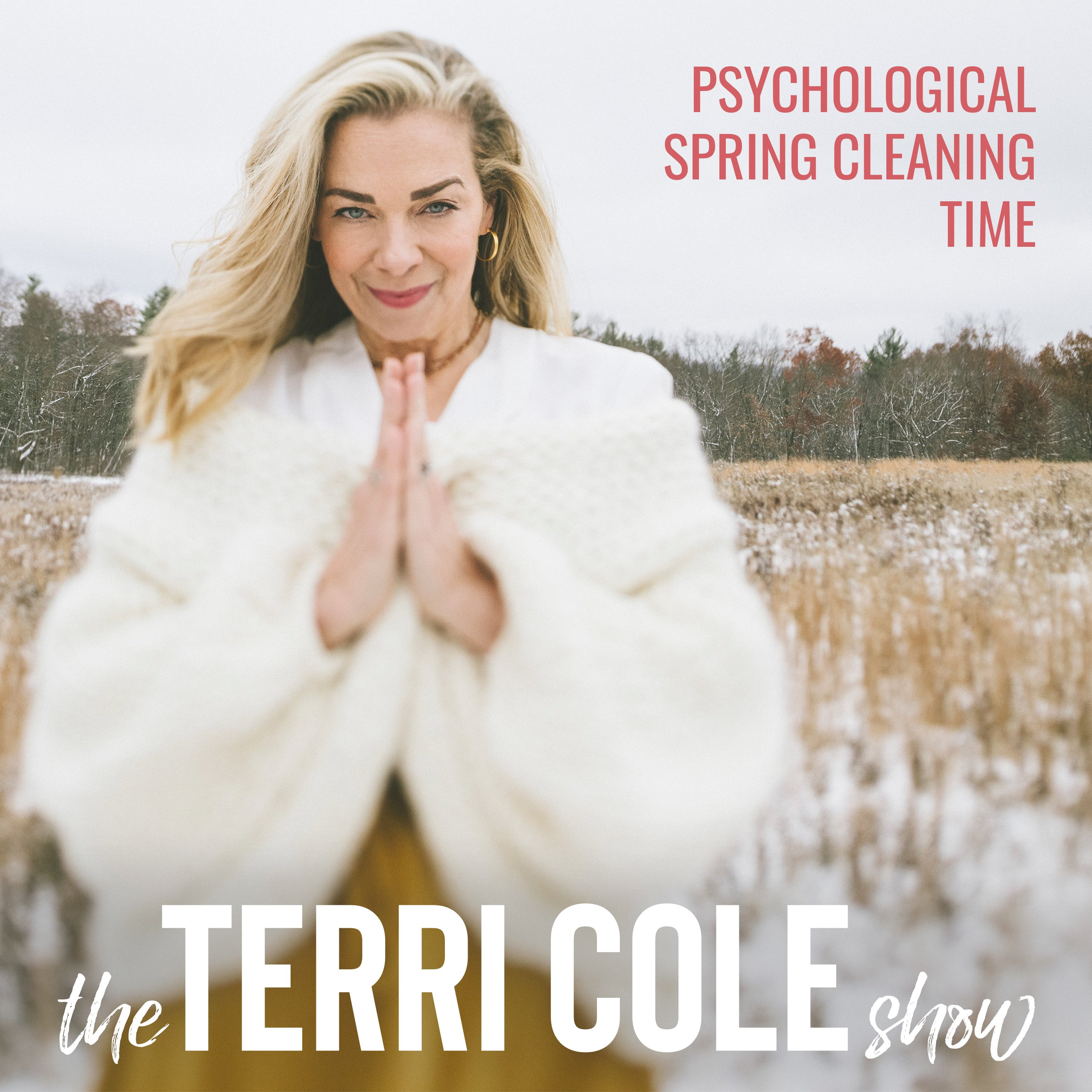 Psychological Spring Cleaning Time on The Terri Cole Show
